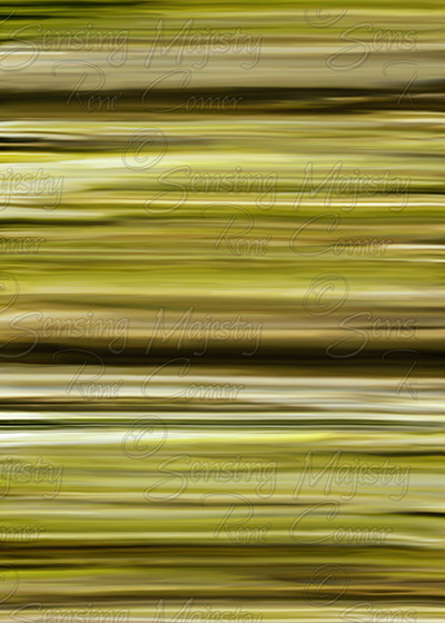 Green Stripes, Photo Art, Various Sizes Available