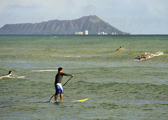 Paddle Board Hawaii, Fine Art Nature Photography, Custom Sizes Available